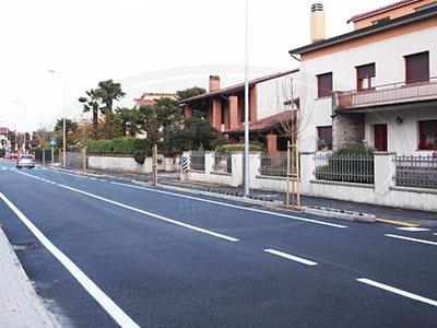 Alberi e tappezzanti Comune di San Vito al tagliamento (PN)