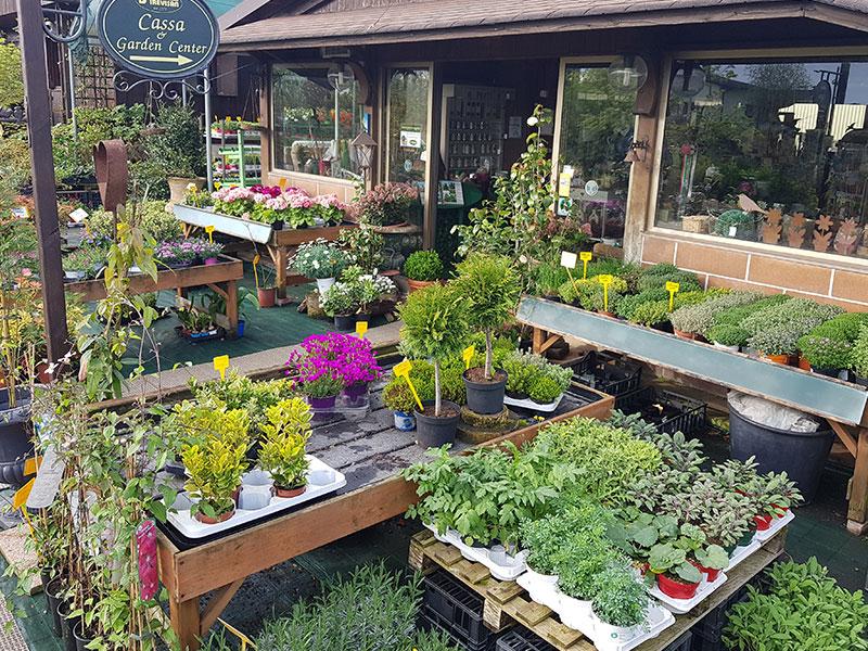 entrata-garden-center