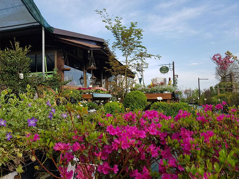 vista-garden