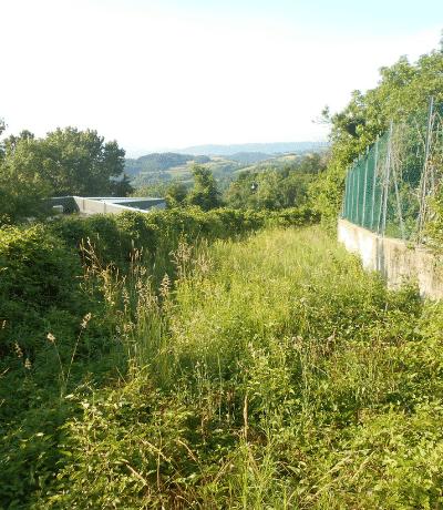 Recupero aree verdi