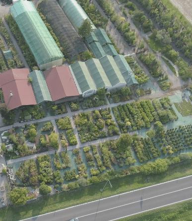 Vivaio e Garden Center Pordenone